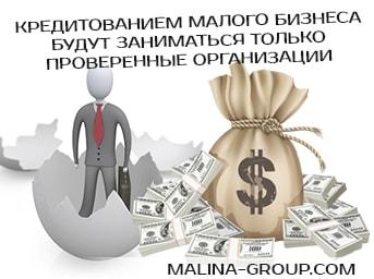 Кредитованием малого бизнеса будут заниматься только проверенные организации