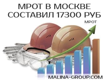 МРОТ в Москве составил 17300 руб