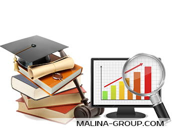 СФ одобрил закон о введении института налогового мониторинга