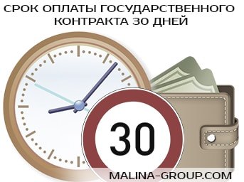 Срок оплаты государственного контракта 30 дней