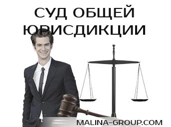 Суд общей юрисдикции